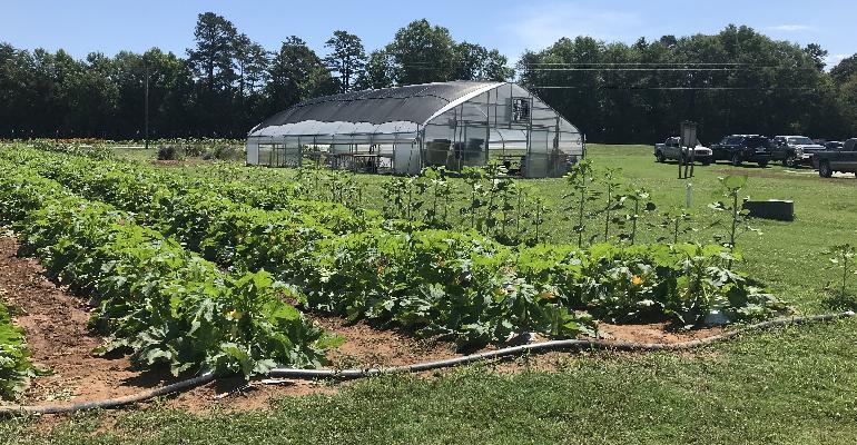 Spartanburg_schools_organic_farm.jpg