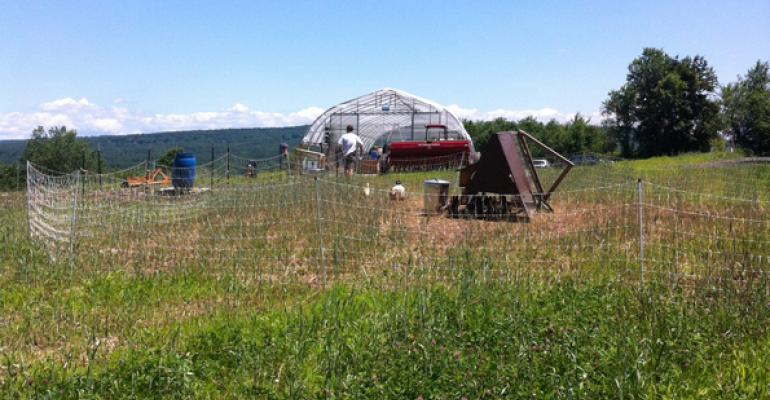 The Book  Plow Farm at Amherst College grows vegetables and offers some great learning opportunities as well