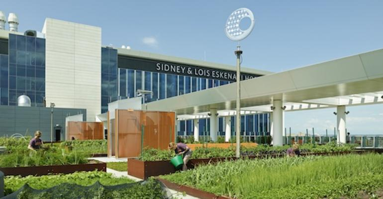 FARMER IN THE SKY Crops slated for use in onsite dining operations grow on the roof of Eskenazi Hopsital39s outpatient building