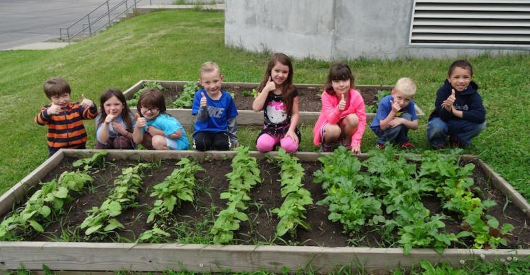 Kinder gardeners