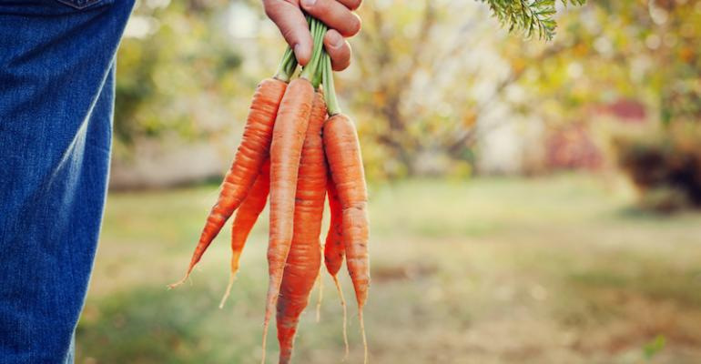 Site tabulates top sustainable college-run farms