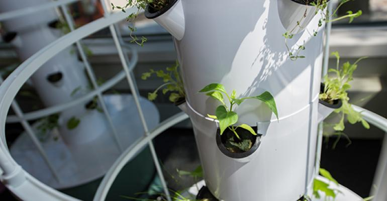 Three vertical towers at the University of Wisconsin Oshkosh grow vegetables and herbs for use in dining services