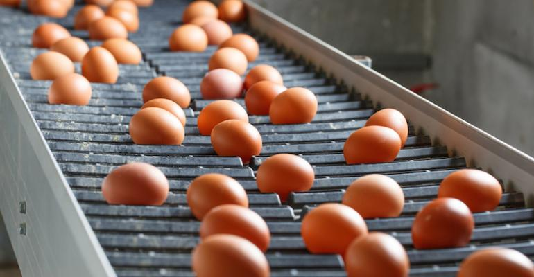 Domestic egg production rebounding, industry says