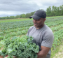 Donald Hines of Hines Family Farm.png