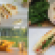 best-sandwiches-readers-choice.png
