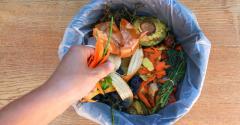 food-waste-compost-bin.jpg