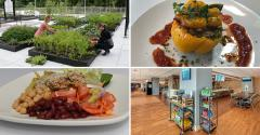 See what's trending in healthcare dining this month with FM including hospitals helping the homeless, rooftop dining, vegetarian menus and a farm-to-table design