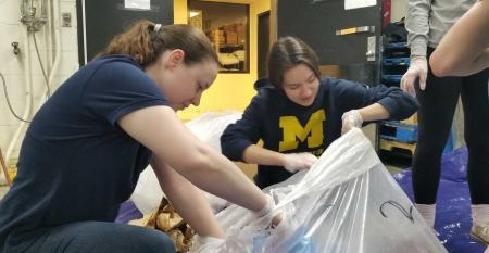University of Michigan composting.jpg