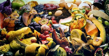 multi-campus-food=waste=study.jpg