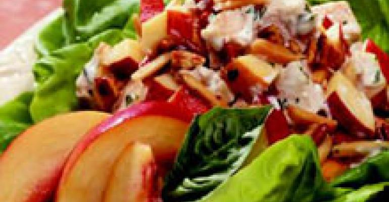 Chicken and Nectarine Salad with Basil Aioli