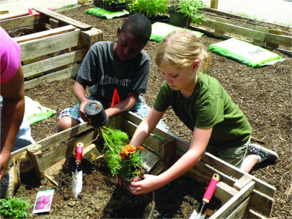 Memphis City Schools garden